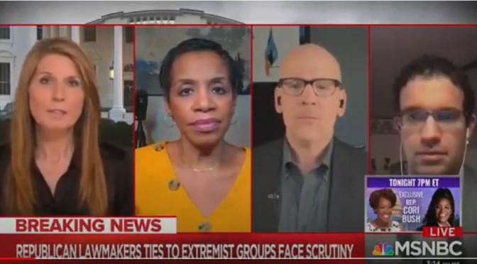 WATCH: MSNBC's Nicole Wallace Suggests Killing Conservative Americans with  drone strikes