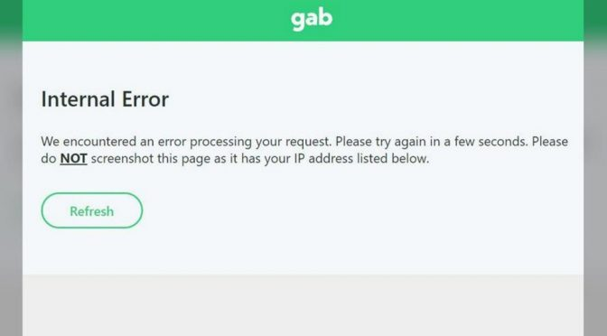 Gab goes offline after refusing to pay hackers, accuses Biden admin & 'oligarch tyrants' of wanting to shut them down
